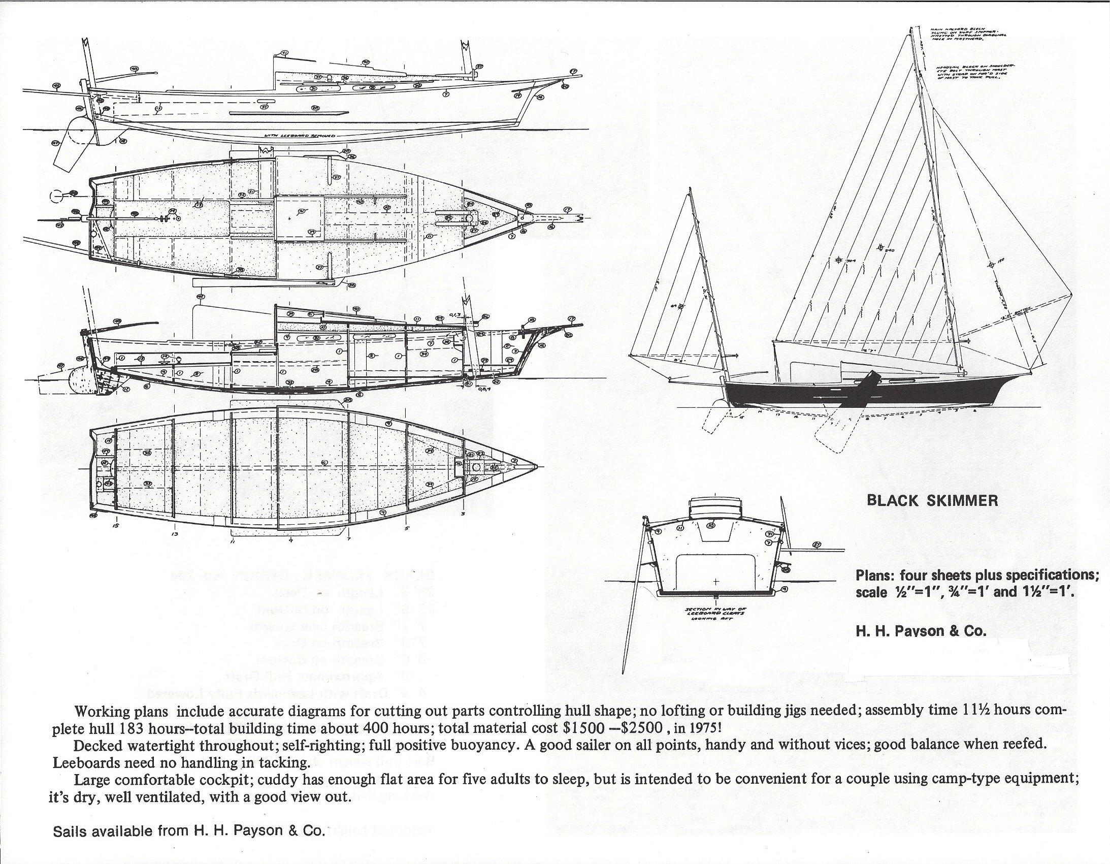 Black Skimmer 25'-3